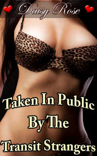 cover design for the book entitled Taken In Public By The Transit Strangers