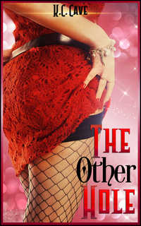 cover design for the book entitled The Other Hole