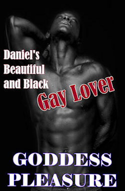cover design for the book entitled Daniel