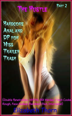 cover design for the book entitled The Hustle Hardcore Anal and DP for Miss Trailer Trash Part 2