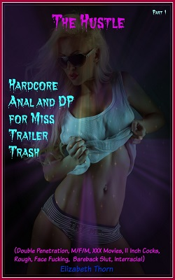 cover design for the book entitled The Hustle Hardcore Anal and DP for Miss Trailer Trash Part 1