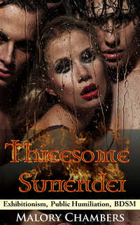 cover design for the book entitled Threesome Surrender
