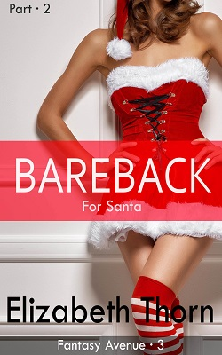 Bareback for Santa - Part 2 (Fantasy Avenue, 3)
