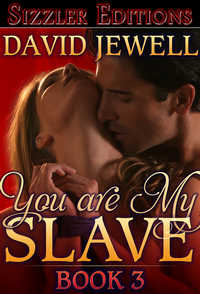 cover design for the book entitled You Are My Slave Book 3