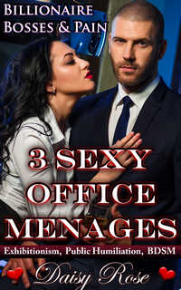 3 Sexy Office Menages