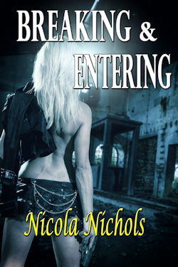 cover design for the book entitled Breaking & Entering