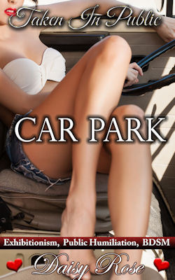 cover design for the book entitled Car Park