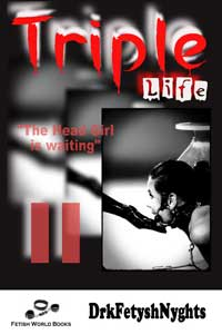 cover design for the book entitled TRIPLE LIFE 2