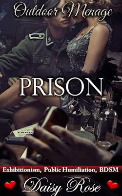 cover design for the book entitled Prison