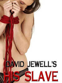 cover design for the book entitled His Slave