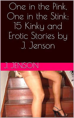 One in the Pink, One in the Stink: 15 Kinky and Erotic Stories by J. Jenson