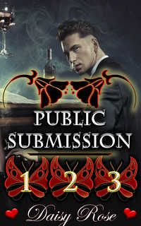 Public Submission 1 - 3 by Daisy Rose