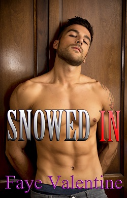 cover design for the book entitled Snowed In
