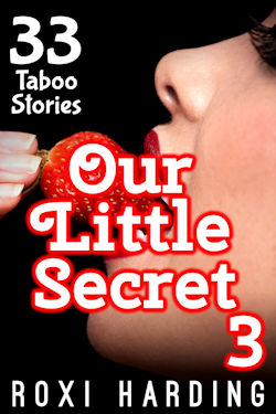 Our Little Secret 3