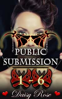 cover design for the book entitled Public Submission 1 - 6