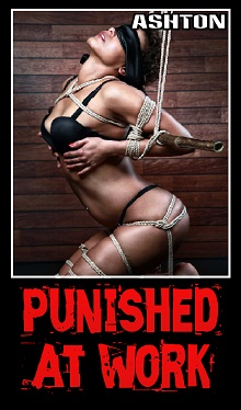 cover design for the book entitled Punished at Work