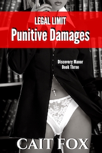 cover design for the book entitled Legal Limit: Punitive Damages