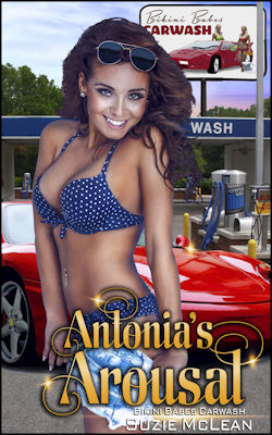 cover design for the book entitled Antonia