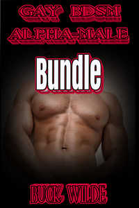 cover design for the book entitled GAY BDSM ALPHA-MALE BUNDLE
