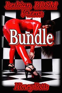 cover design for the book entitled Lesbian BDSM Vixens Bundle