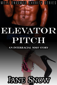 Elevator Pitch (Interacial Black MM/White F Erotica)