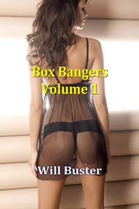 Box Bangers - Volume 1 by Will Buster