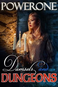 cover design for the book entitled Damsels and Dungeons