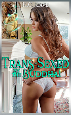 cover design for the book entitled Trans-Sexed By The Buddha!