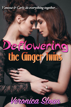 cover design for the book entitled Deflowering the Ginger Twins