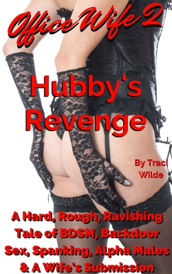 cover design for the book entitled Office Wife 2: Hubby