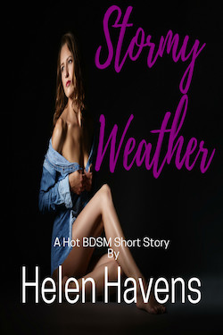 cover design for the book entitled Stormy Weather