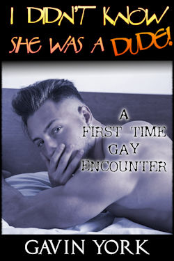 cover design for the book entitled I Didn
