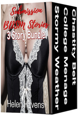 cover design for the book entitled Submission BDSM Stories