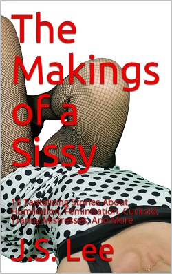 cover design for the book entitled The Makings of a Sissy