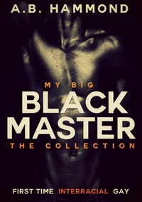 cover design for the book entitled My Big Black Master