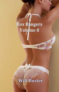 Box Bangers - Volume 8 by Will Buster