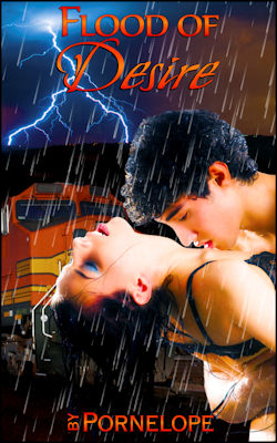 cover design for the book entitled Flood of Desire