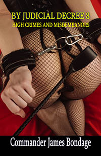 cover design for the book entitled By Judicial Decree 8: High Crimes & Misdemeanours