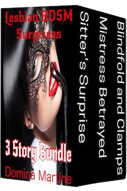 cover design for the book entitled Lesbian BDSM Surprises