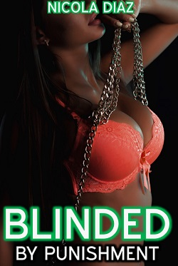 cover design for the book entitled Blinded by Punishment