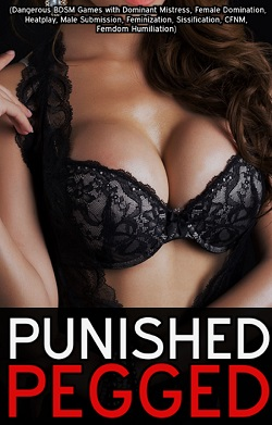 cover design for the book entitled Punished Pegged