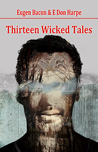 Thirteen Wicked Tales by Eugen Bacon & E Don Harpe