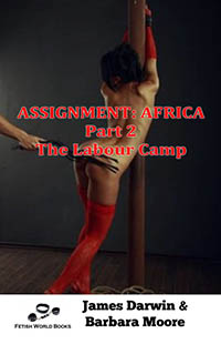 cover design for the book entitled Assignment: Africa-Part 2