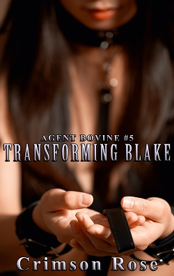 cover design for the book entitled Transforming Blake