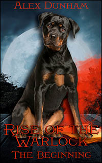 cover design for the book entitled Rise of the Warlock: The Beginning