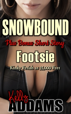 cover design for the book entitled Snowbound