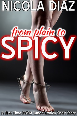 From Plan to Spicy - A First Time BDSM Taboo Short Story