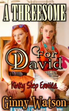 cover design for the book entitled A Threesome For David