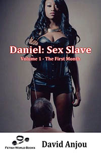 cover design for the book entitled Daniel: Sex Slave