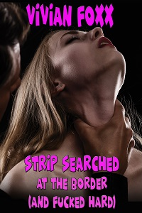 cover design for the book entitled Strip Searched at the Border (And Fucked Hard)